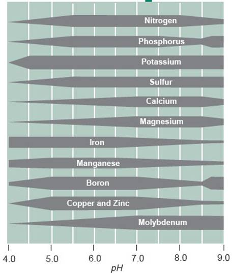 effects of low testosterone levels in males