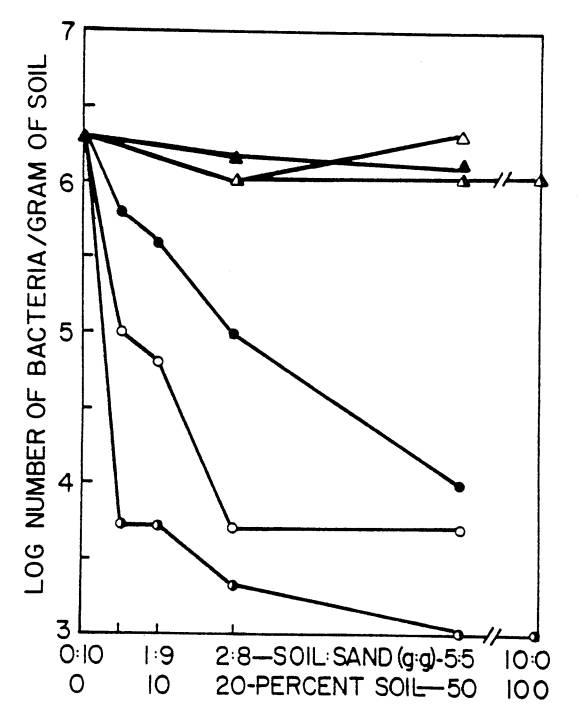 thesis on rhizobium