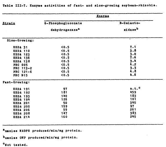 Rhizobium phd thesis