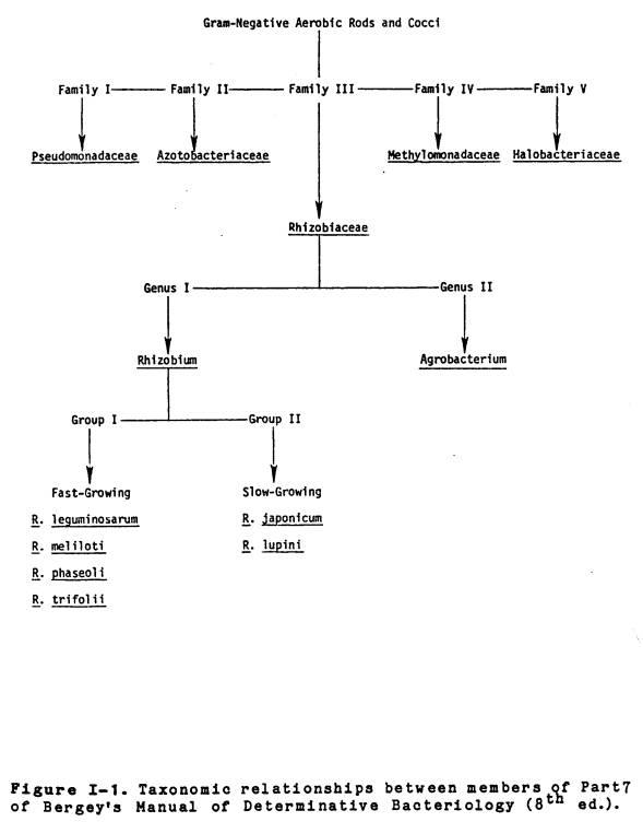 ... life of soybean rhizobia. J. Agric. Assoc. China (New Series)64:13-17