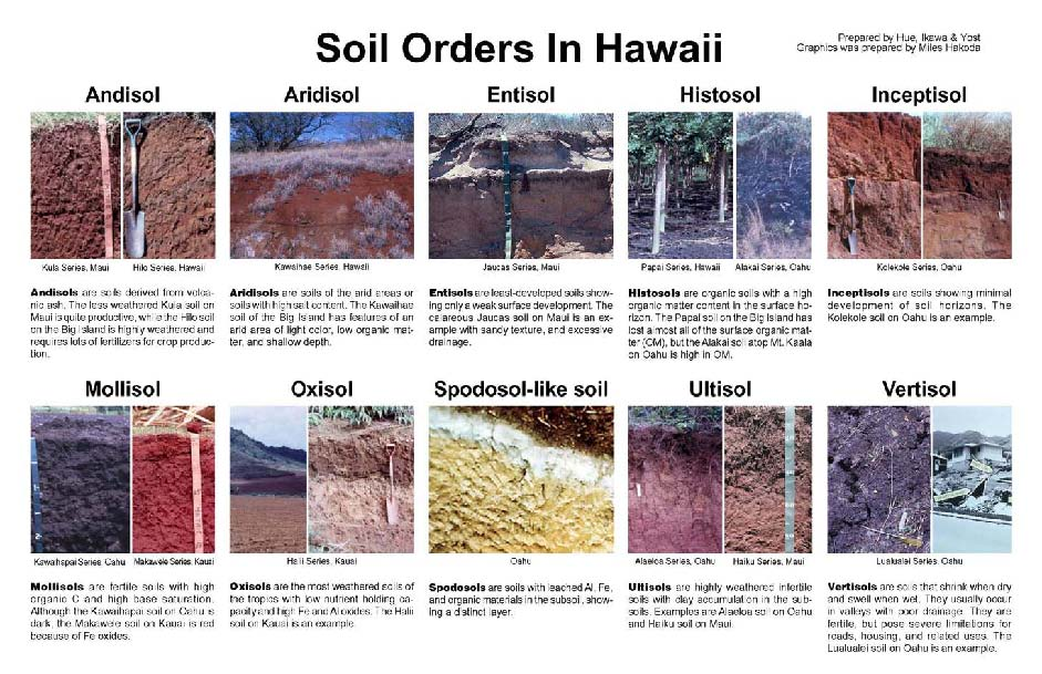 Andisols for 5 facts about soil