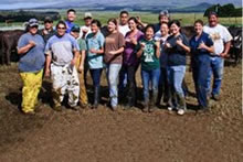 Ashley Stokes and beef herd breeding class