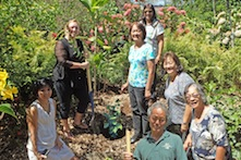 4-H Extension Agents: Claire Nakatsuka, Kate Everett, Joan Chong, Becky Settlage, Laura Kawamura, Rose Saito, Steve Nagano, plant Minnie Lee II at the Urban Garden Center