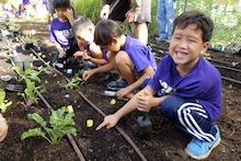 Noelani students in new garden