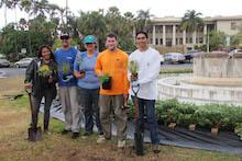 Varney Circle planting project