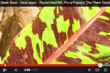 Video on The Plant Doctor and Pic-a-Papaya apps