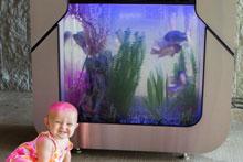 Aquaponics demonstration