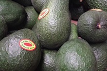 avocados from Hawaii