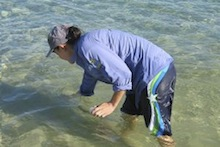 Collecting seawater