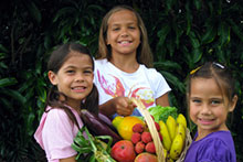 Image from the Hawai'i Farmers Market and Agritourism Venues manual