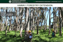 Screen shot from Forestry Extension Site