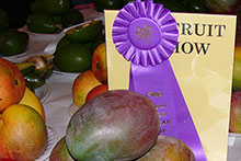 Mangoes at the Fruit and Vegetable Show