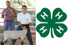 4-H student with his grand champion lamb