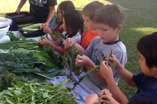 Noelani students and their vegetables