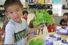 Noelani student with hydroponic lettuce