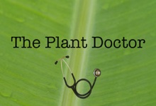 Screen shot of Plant Doctor app