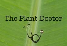 Plant Doctor app image