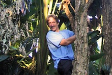 Russell Messing in a tree