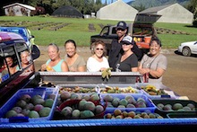 Village Harvest volunteers with fruit