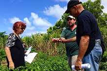 Ted Radovich showcases the work done at the Waimanalo Research Station